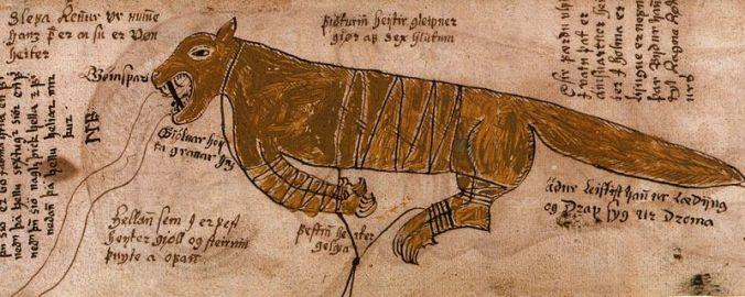 Wikipedia_Fenrir_bound_manuscript
